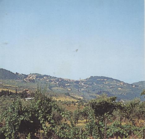 hill-of-fiesole-001