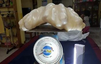 puerto-princesa-giant-pearl