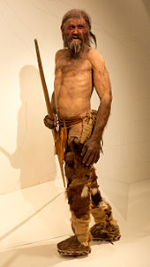 oetzi recon s.tyrol museum of archeo.jpg